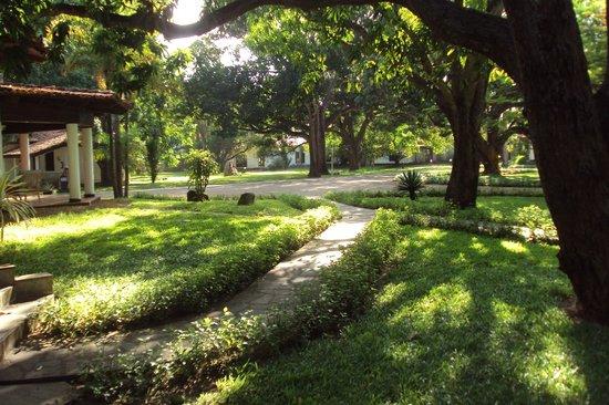 Mwembe Resort: parco davanti all'ingresso del reception