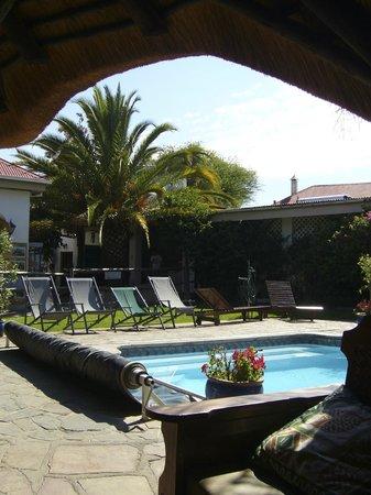 Chameleon Backpackers Hostel: Pool