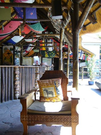 Chameleon Backpackers Hostel: Bar