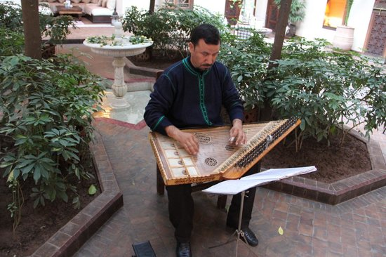 La Villa des Orangers:                   zither player