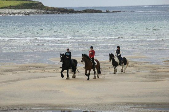 Island View Riding Stables And Riding School Sligo