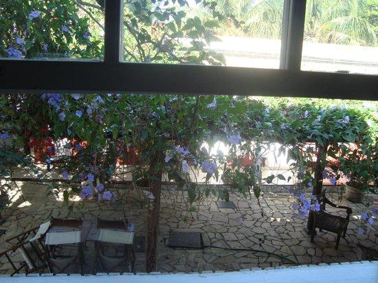 Pousada Tartaruga: vista desde la ventana de la habitación