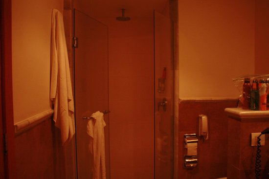 Iberostar Rose Hall Suites: Shower