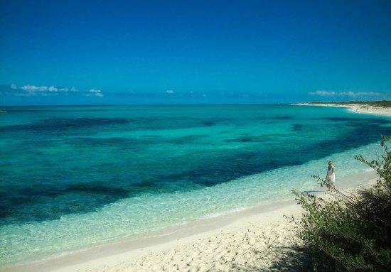 Melia Buenavista:                                                       The North Beach