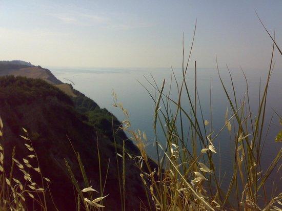 Parco Naturale Monte San Bartolo: Falesia
