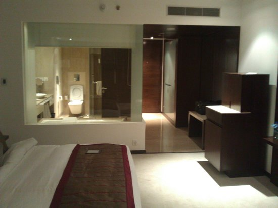 Radisson Blu Plaza Hotel Hyderabad Banjara Hills:                   Business Class Room on 4th Floor