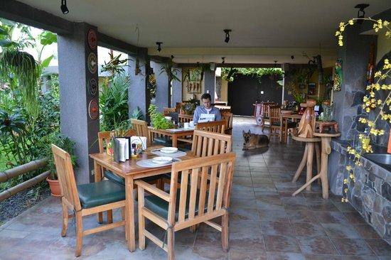Pura Vida Hotel:                   dining area