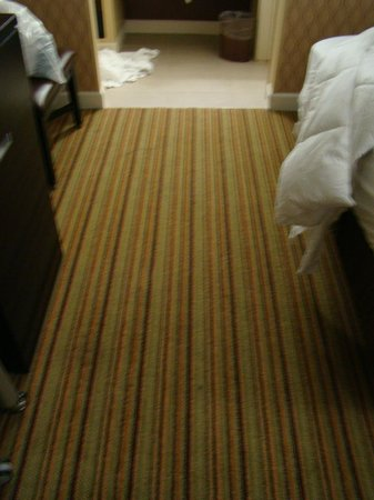 Inn at the Peachtrees:                   Atrocious carpet! This stuff was from way back! It was stained and stunk!