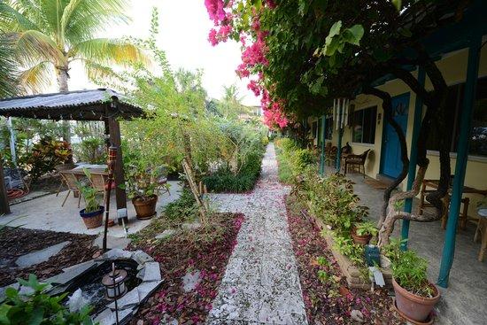 The Desoto Inn: Garden