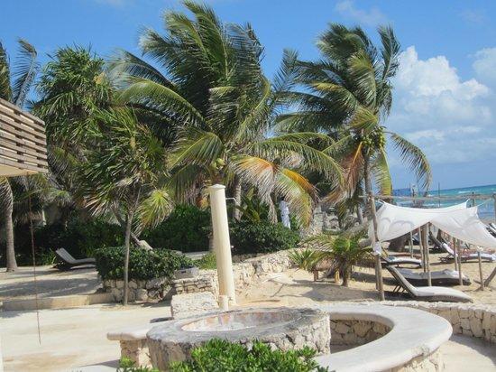 Viceroy Riviera Maya:                   beach                 