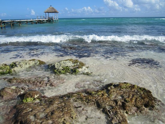 Viceroy Riviera Maya :                   This is why you can't enter ocean directly in front of resort
