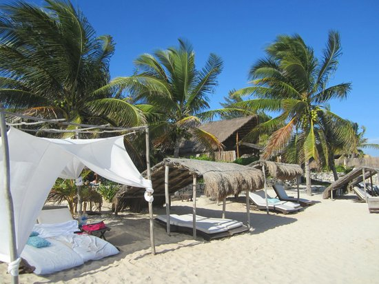 Viceroy Riviera Maya:                   on the beach