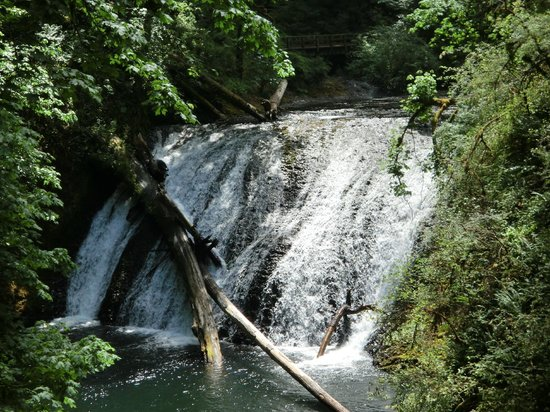 Silver Falls State Park:                   each set of falls is different