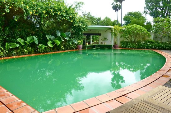 Amatao Tropical Residence : La piscine