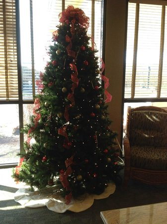 Days Hotel Egg Harbor Township-Pleasantville-Atlantic City:                   Christmas Tree
