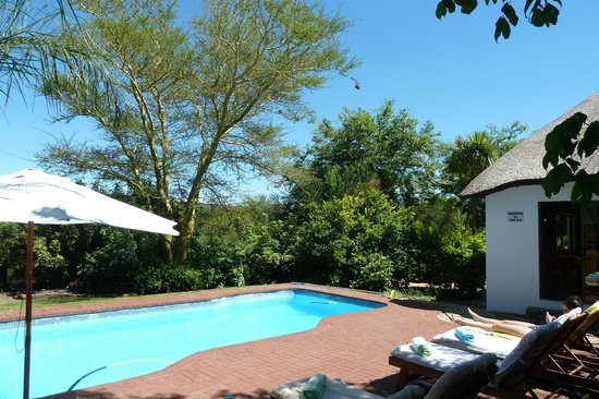 De Old Drift Guest Farm: nice pool