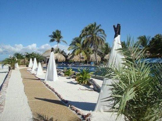 Punta Blanca Hotel: paisajismo hotel punta blanca