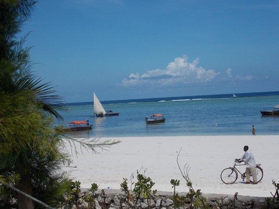 Keys Bungalows: plage de Matemwe (vue de l'hôtel)