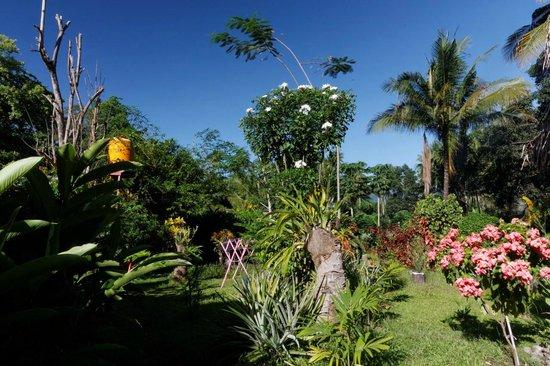 Kupa-Kupa Beach Cottages & Bar: Der tropische Garten mit vielen Blumen.