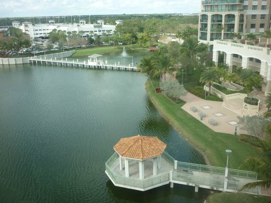 Hilton Garden Inn Palm Beach Gardens:                                     view from roon
