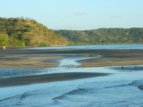 Allegro Papagayo:                   Low Tide on Beach