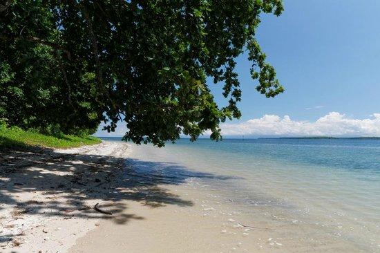 Tobelo, إندونيسيا: Weicher weißer Korallensand und ruhiges, glasklares Wasser. 