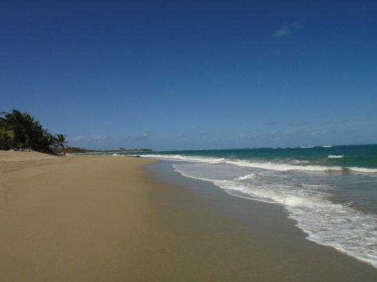 Kite Beach Hotel:                   Kite Beach