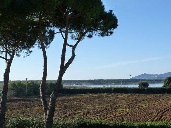 Fattoria Il Casalone: Vista mare Orbetello da Agriturismo Casalone