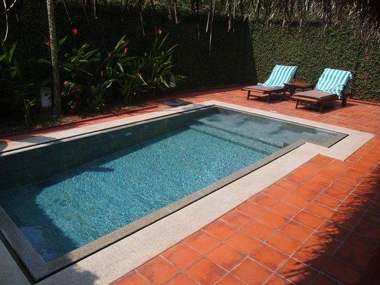 Marari Beach Resort:                   pool in villas