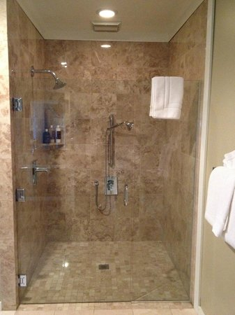 MacCallum House Inn : Shower in Morning Glory suite