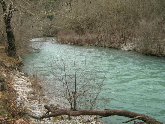 Chrysoula's Guests:                   nearby river