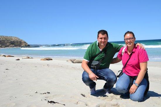 Kangaroo Island Odysseys: Spiaggia con i leoni marini