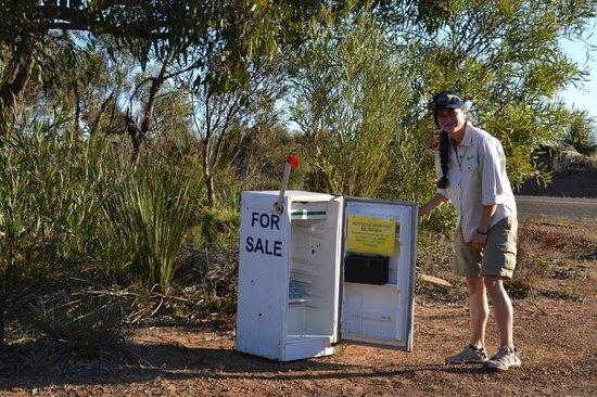 Kangaroo Island Odysseys: Vendita self service di uova!