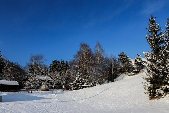 Familien-Landhotel Stern: Umgebung