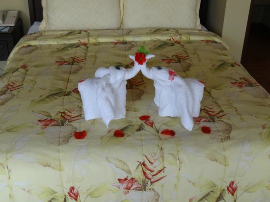 "Arenal Kioro:                   ""Kissing Elephants"" on our bed"