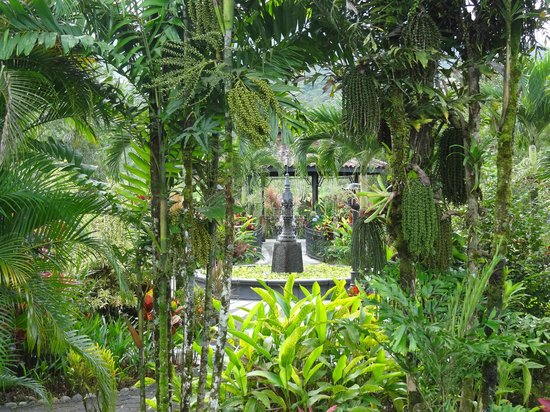 Arenal Kioro Suites & Spa:                   Fountain in gardens