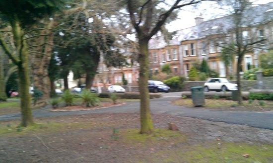 Thorn Park Dogging