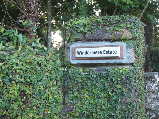 ‪‪Windermere Estate‬:                   front gate