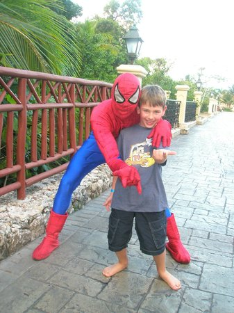 Grand Bahia Principe Punta Cana:                   Spiderman just hang'in out one morning