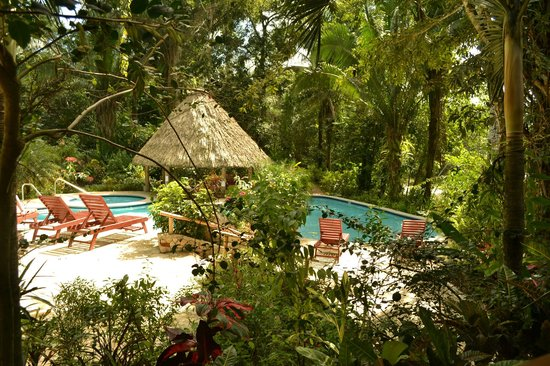 Ian Anderson's Caves Branch Jungle Lodge:                   Pool and Jacuzzi