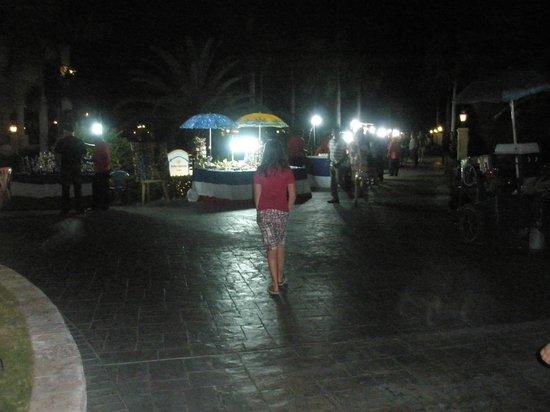 Grand Bahia Principe Punta Cana:                   One evening vendors were brought in