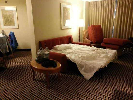 Hilton Chicago Oak Brook Suites:                   The sofa bed, which was actually pretty comfortable