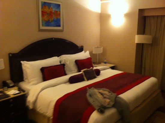 เดอะ คลาริดจ์ นิวเดลี:                   Amazing rooms