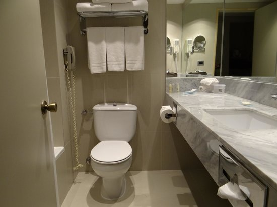 Holiday Inn Express Temuco: Baño