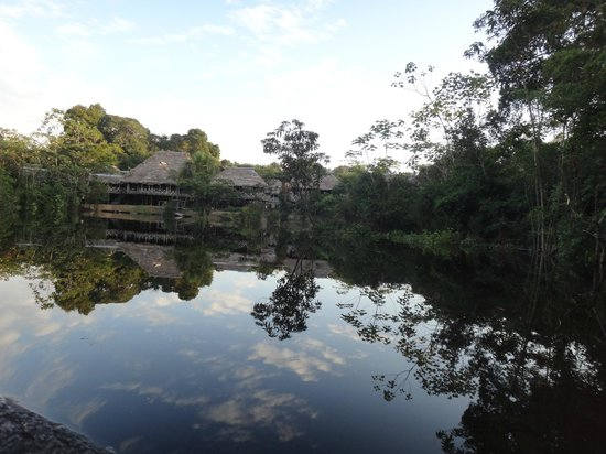 Amazonia Expeditions' Tahuayo Lodge:                   Amazon Research Center