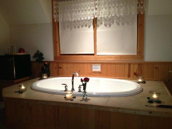 Tauschek's B & B Log Home :                   Room
