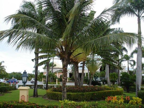 Grand Bahia Principe Punta Cana:                                     Hotel Grounds