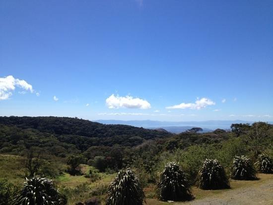Hotel Montana Monteverde: vista de la habitación