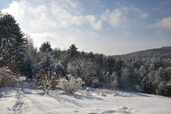 Woodstock Country Inn: Winter wonderland