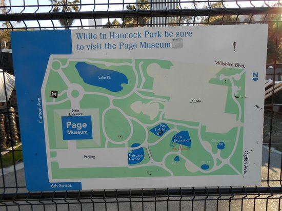 Map of the park  Picture of La Brea Tar Pits and Museum Los